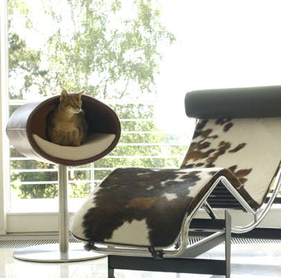 Design meubels voor dieren - Contemporary cat furniture ideas ...